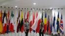 IIA w Brukseli